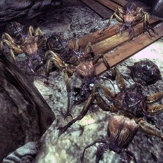 Гігантські мурахи в підвалі школи Спрингвейла