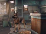 Chien (Fallout 4)