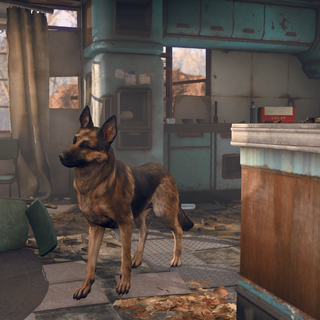 Dogmeat in the <a class=