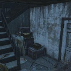 Door leading to the basement