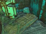 Цвяхомет (Fallout 4)
