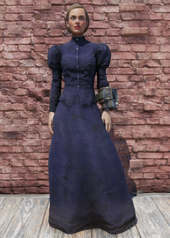 FO76 Halloween Costume Witch