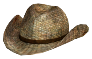 Kapeluszkowbojskirattan