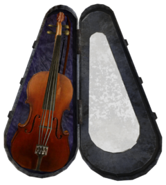 Stradivarius and case