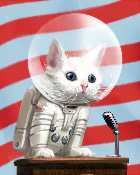 mr peebles the first cat in space