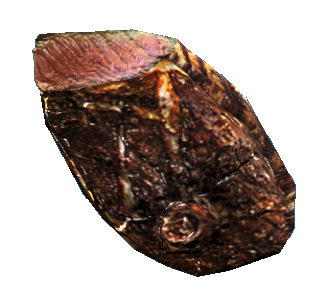Mirelurk queen steak.png