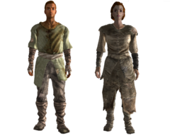 Wasteland settler outfit
