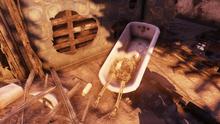 Skeleton Superior Sunset Farm