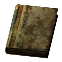 Small Scorched Book