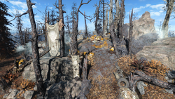 FO4FH Radiant Crest Shrine