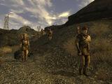 Первый разведывательный батальон НКР