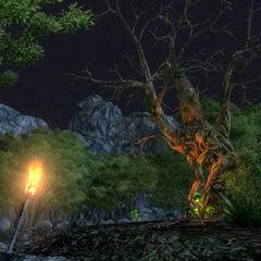 Харольд у світлі факела