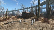 FO4 Small Trading Shack cat graves