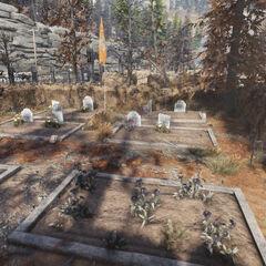 The Cemetery at Allegheny Asylum