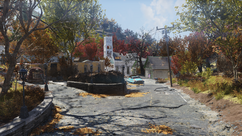 Flatwoods Fallout 76