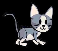 FOS Cat3