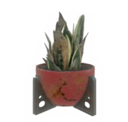 Fo4 red potted plant4