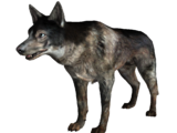 Dog (Fallout: New Vegas)