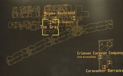 The Gray map