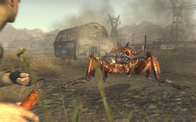 File:Giant ant fnv.jpg