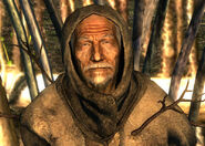 Treefather Birch