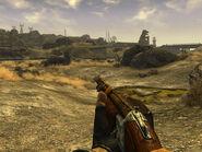 Caravan shotgun 1