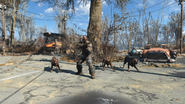 FO4 Breeder & his dogs