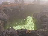Fissure site Prime