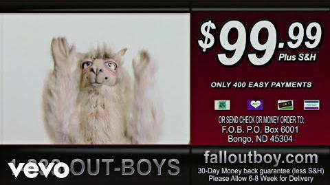 Fall Out Boy - Wilson (Expensive Mistakes)