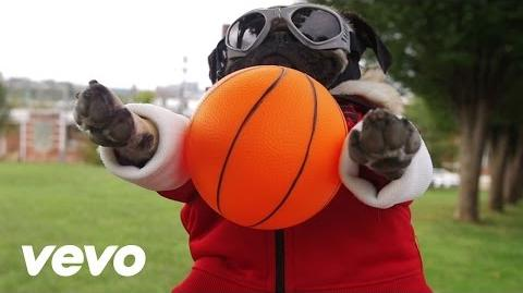 Fall Out Boy - Irresistible (Starring Doug The Pug) ft