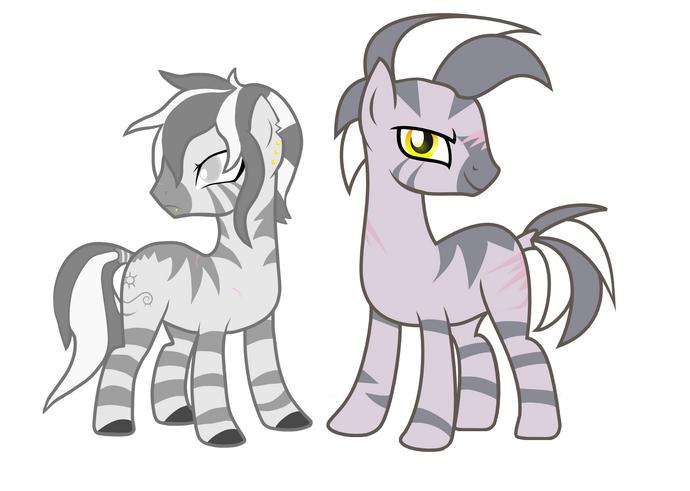 Зебры (раса)