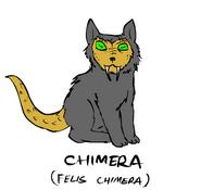Химера