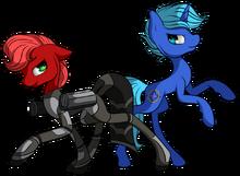 Rose and Nova
