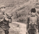 Chinese Invasion of Indonesia and Malaysia