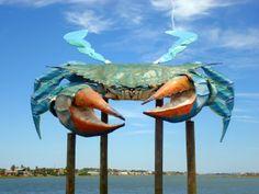 Big Blue crab-Rockport