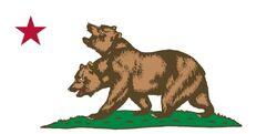 Little Bear Company