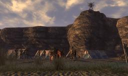Luminate Tribe Village