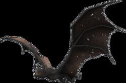 Greater Vampire Bat
