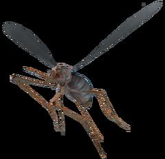 Bloodbug