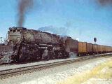 Railroad Nomads