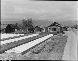 Redvine Ranch