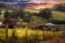 Appalachian-mountain-farm-debra-and-dave-vanderlaan