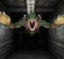 Green Hide Hallway