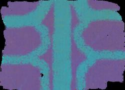 River Men Logo