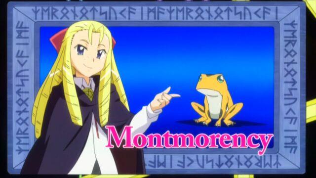File:Montmorency.jpg