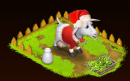 XmasGoat view
