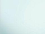 Family Guy Season 17