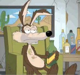 Depressed Coyote