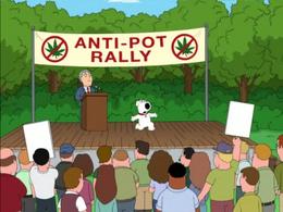 Pot is Bad