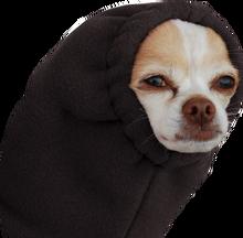 Doggotrans